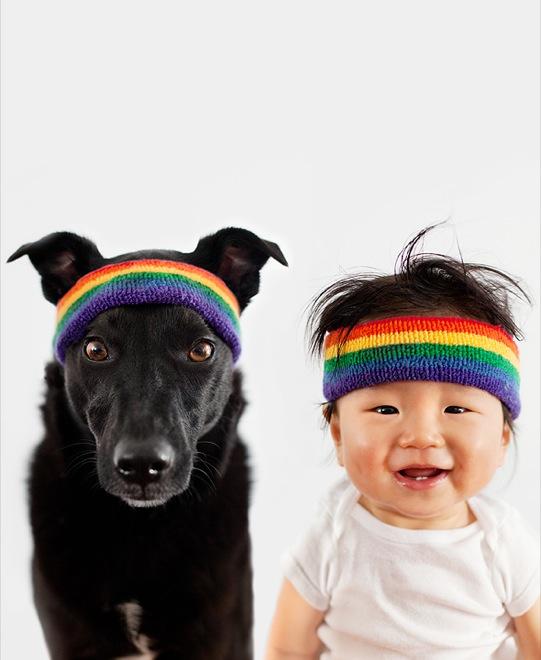 мальчик и собака в повязках
