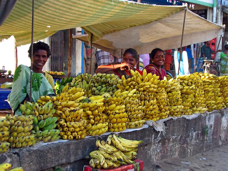 банан это ягода или фрукт