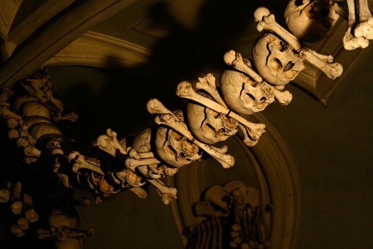 кости нашли
