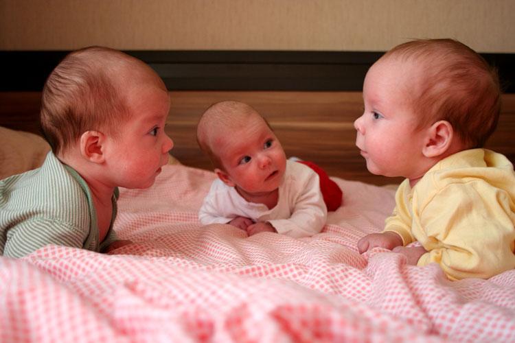 родились тройняшки