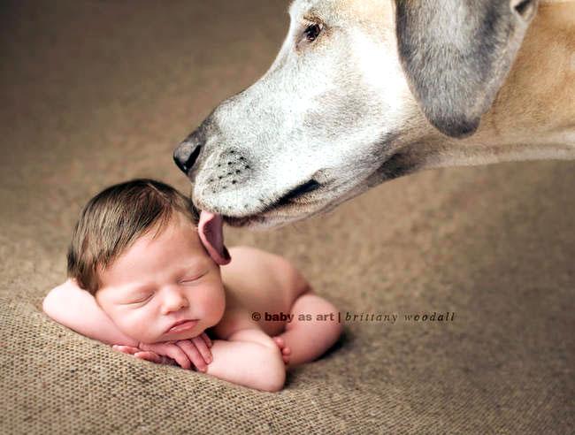 дети и собаки фото