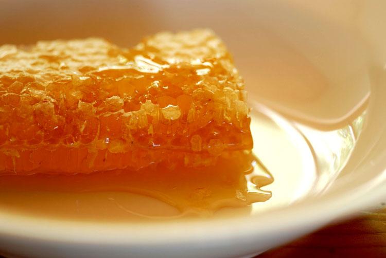 польза мёда для организма