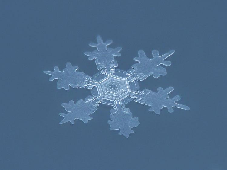 фото со снежинками