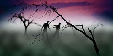 как выжить в зомби апокалипсисе