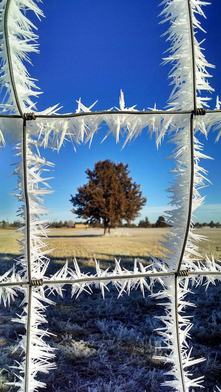 картинки пейзаж зима