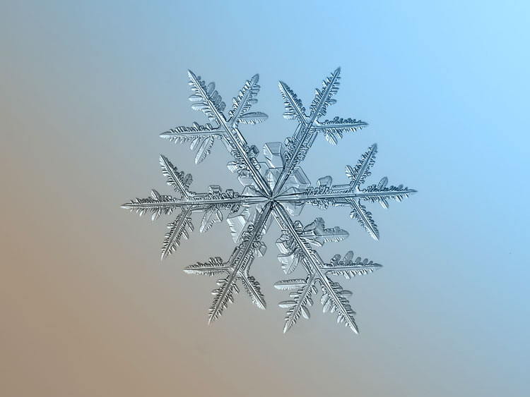 картинки снежинки зима