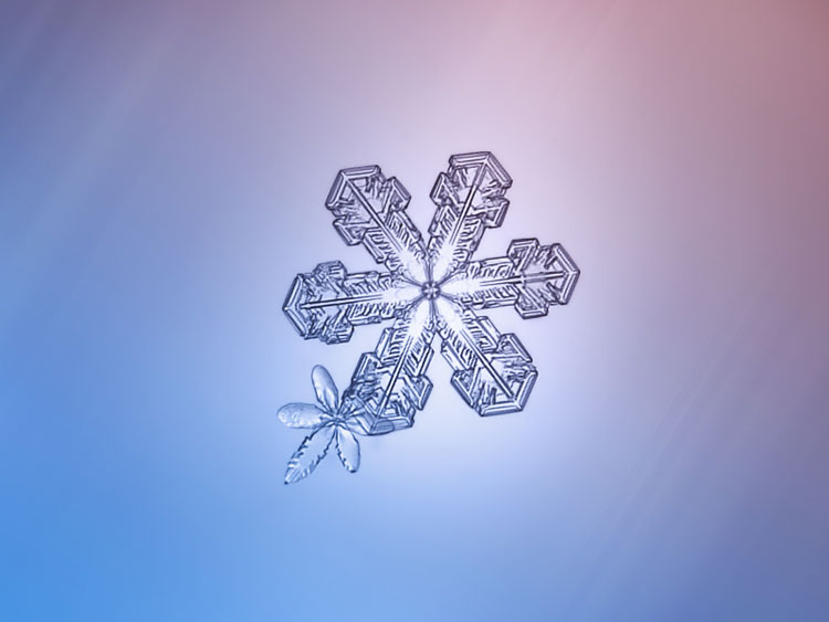 красивые картинки снежинки