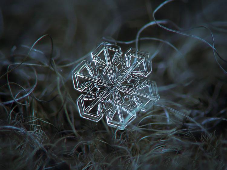 красивые снежинки фото