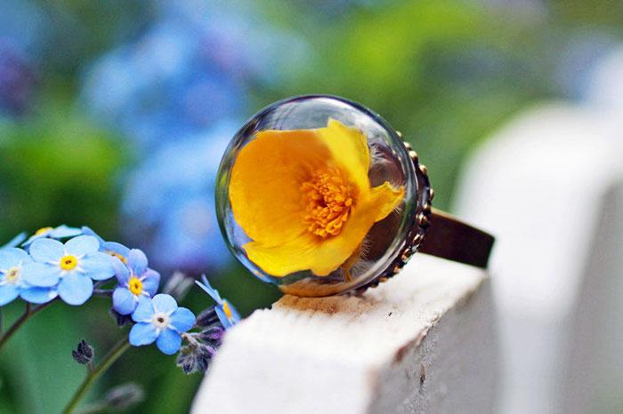красивые фотографии колец