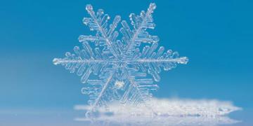 снежинки фото картинки