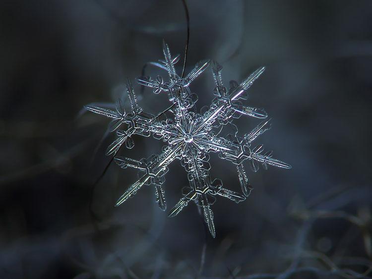 снежинки льдинки