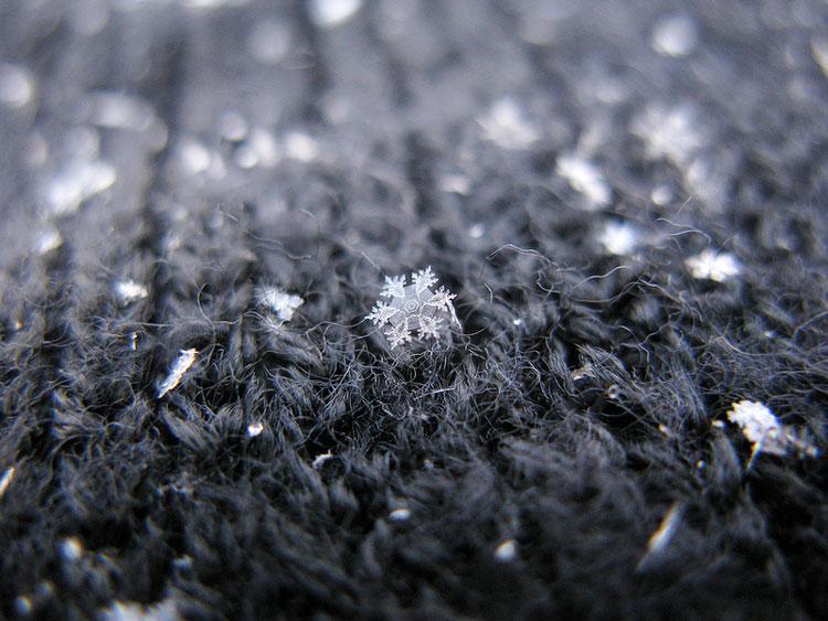 снежинки снежные