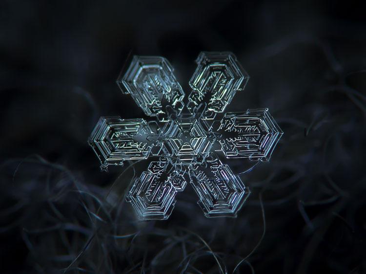 зимние снежинки картинки
