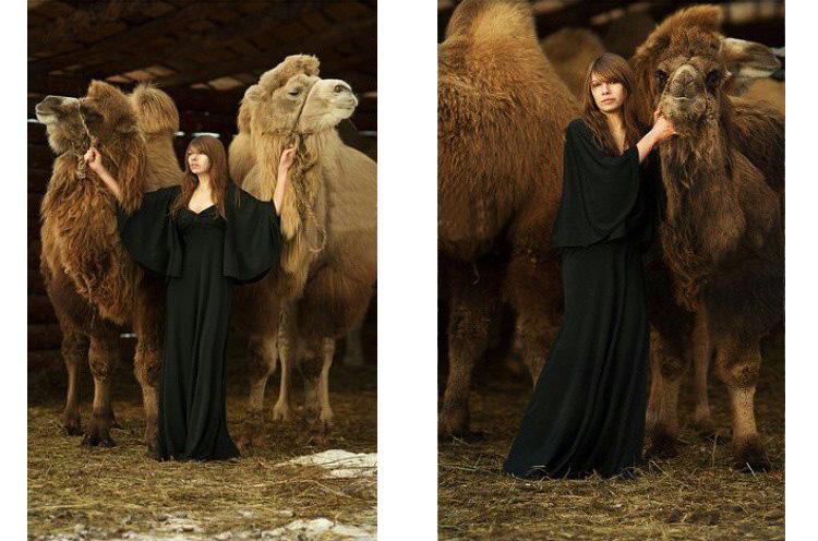 фотографии верблюда