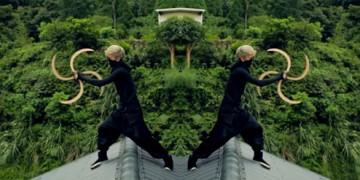 искусство ниндзя