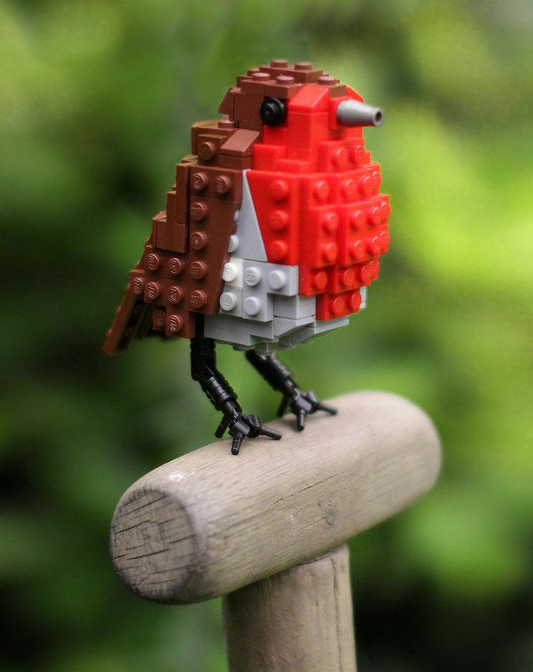 картинки на тему птицы