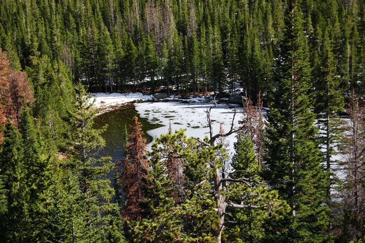 озеро зимой фото