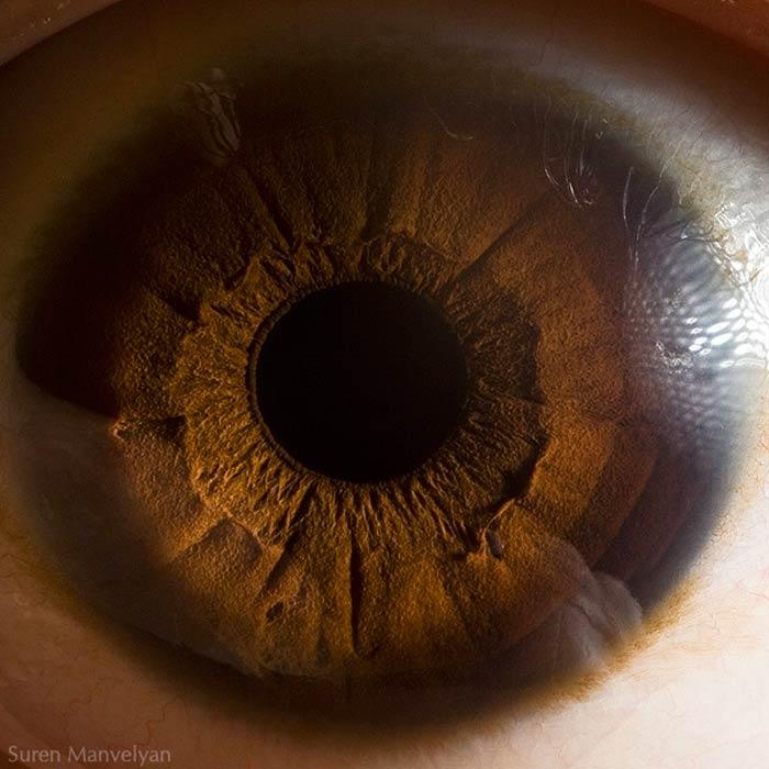 цвет глаз карий