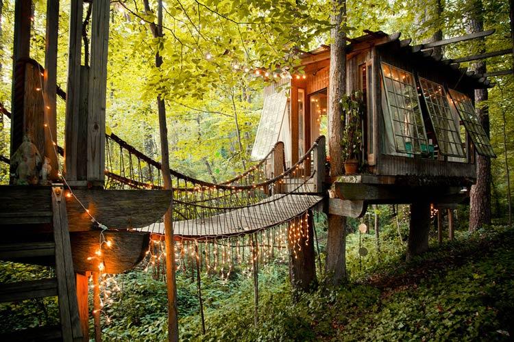 домик на дереве картинки