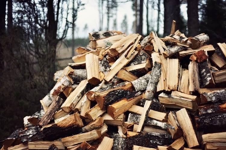 фото дрова колотые