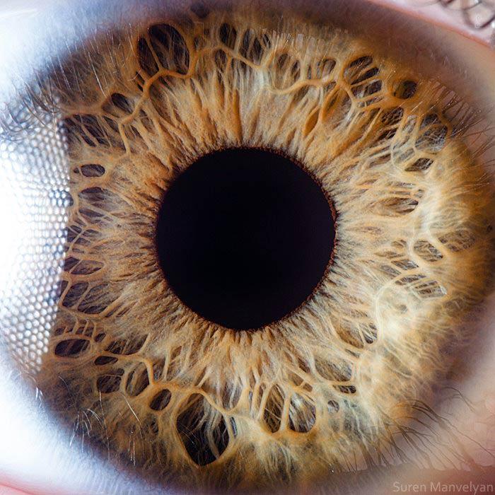 фотографии глаз человека