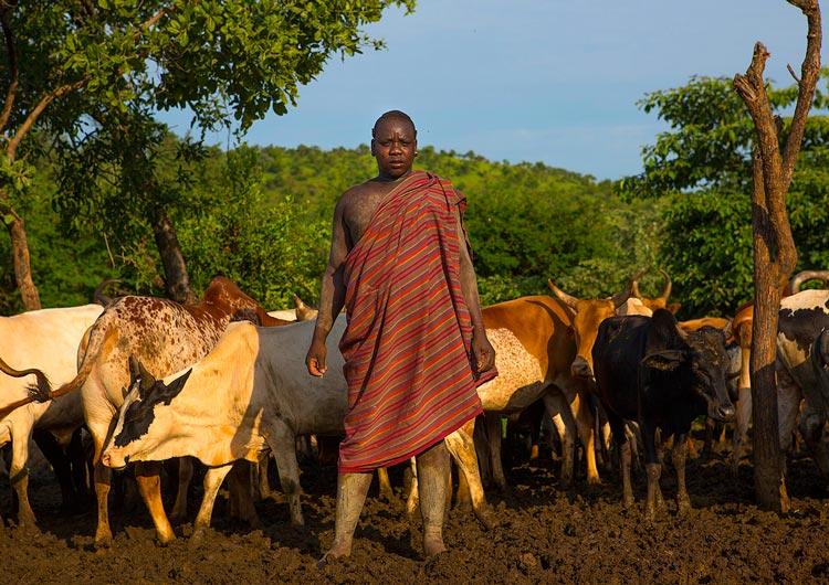 какие народы живут в эфиопии