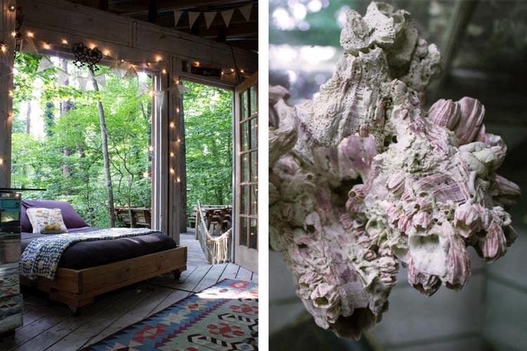 красивые дома из дерева