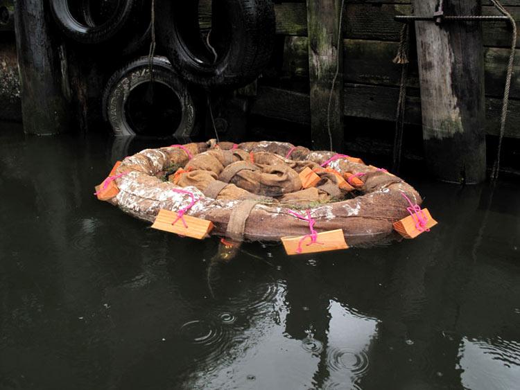 загрязнение воды и способы очистки