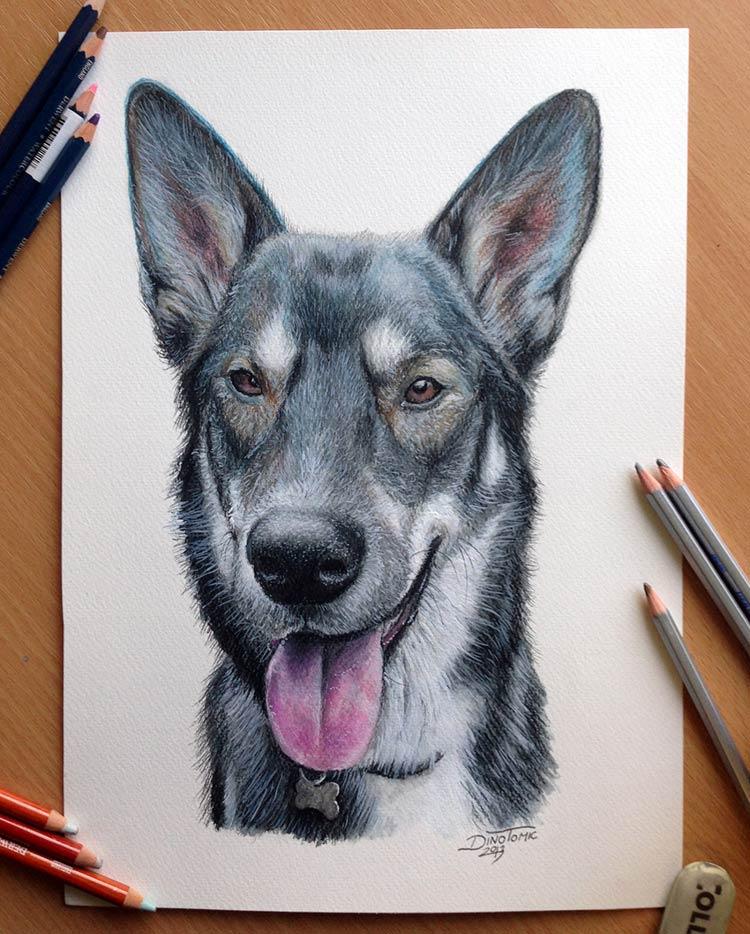 иллюстрации цветными карандашами