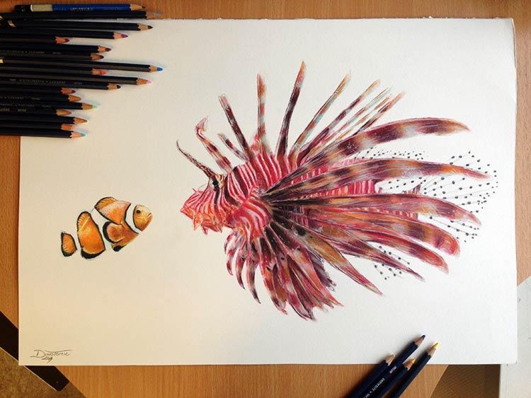 рисунки рыбы цветные