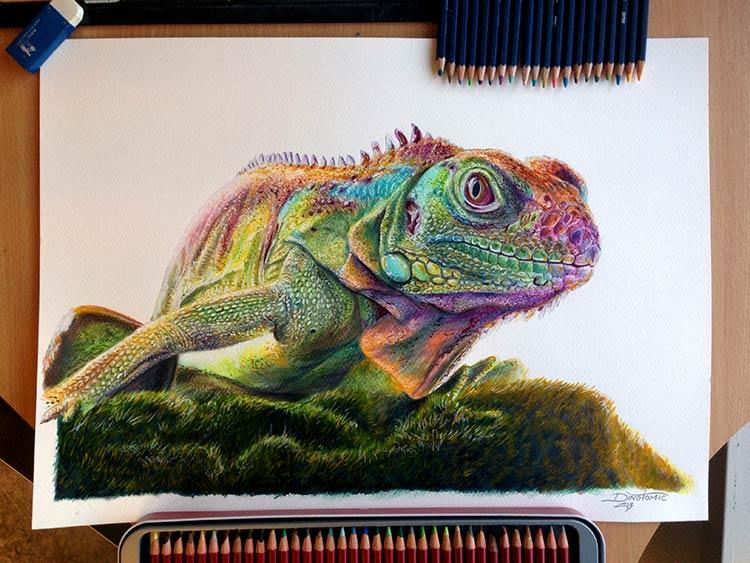 рисунки животных цветными карандашами