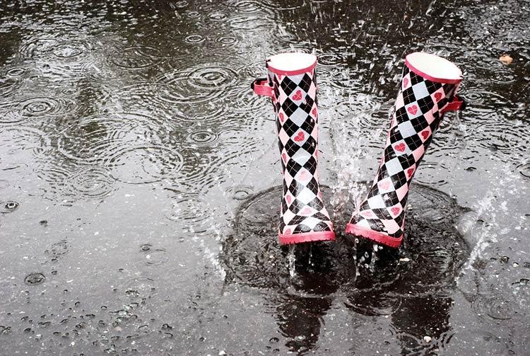 фото дождь весной