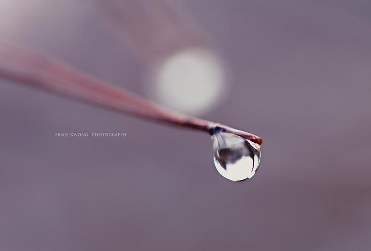 капельки дождя фото