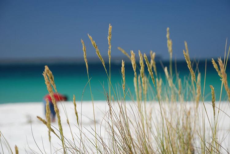 лучшие пляжи с белым песком