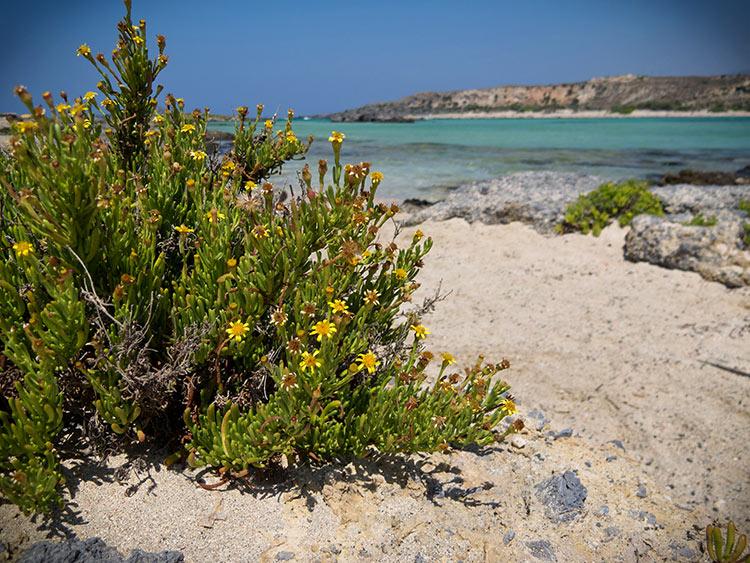 самые лучшие пляжи греции