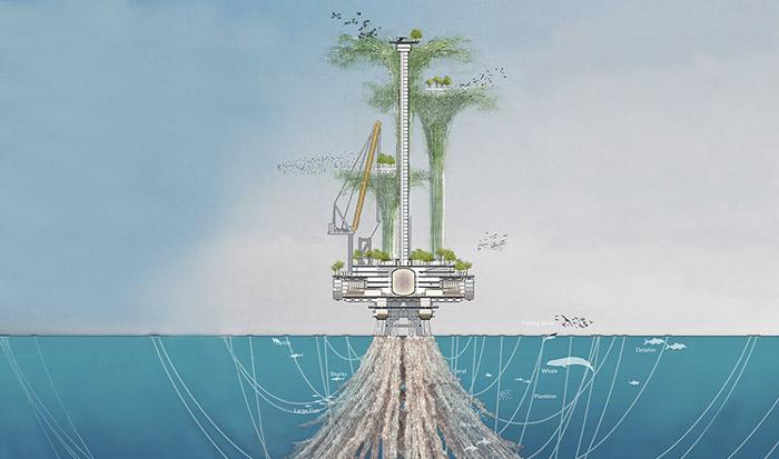островные экосистемы