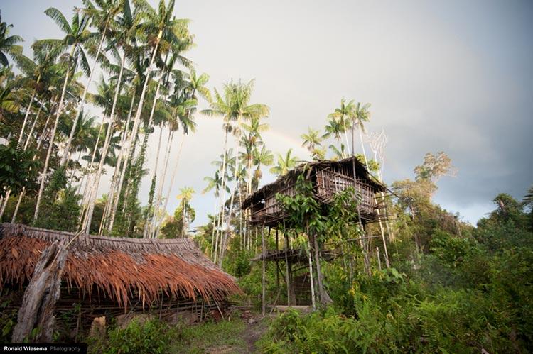 племя фото
