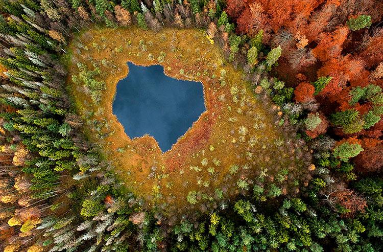 картинки осень природа