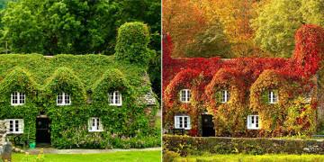 красивая природа летом и осенью