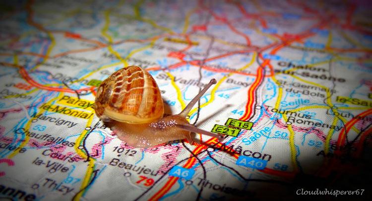 кругосветное путешествие фото