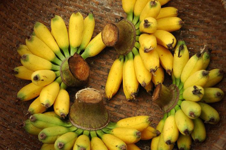 плод банана картинки