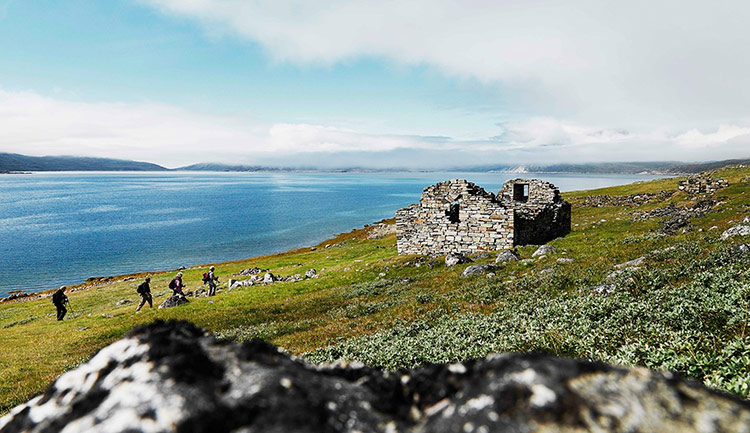 викинги в гренландии