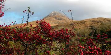 Коннемара – национальный парк Ирландии