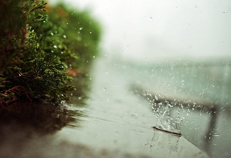 фото про дождь