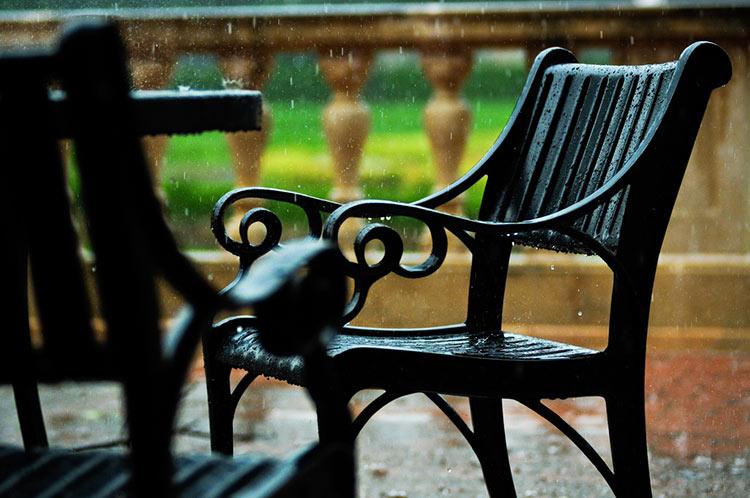 люблю дождь фото