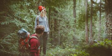 как определить погоду в лесу
