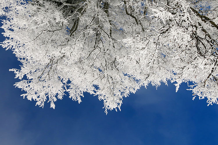 уютная зима день фото