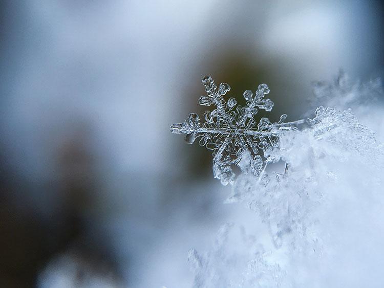 зима снежинки фото