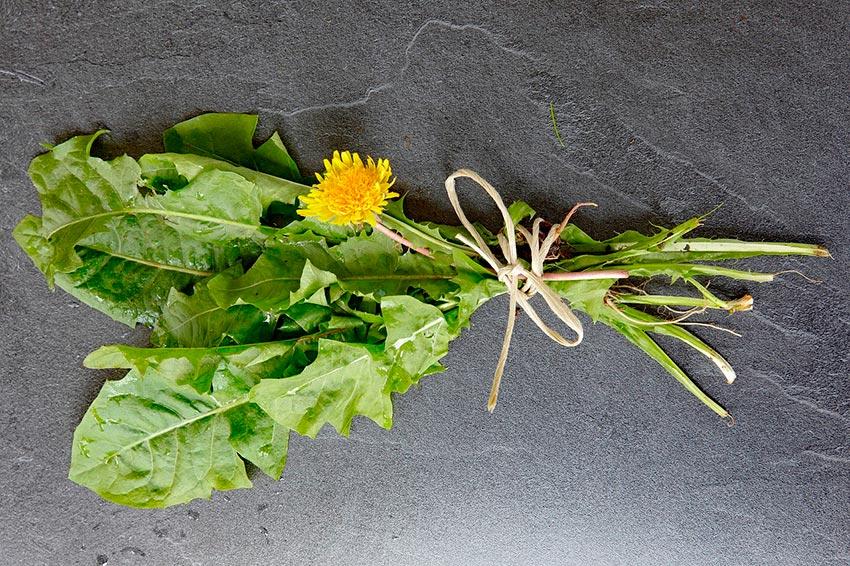 продукты полезные для микрофлоры кишечника