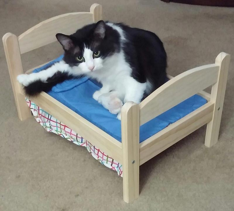 деревянная кроватка для кошки